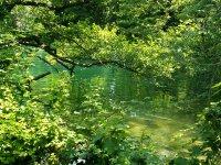 krka príroda